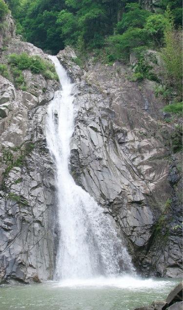 布引の滝は雄滝、雌滝、夫婦滝、鼓滝の4つからなり、特に落差43メートルの雄滝は圧倒的な迫力