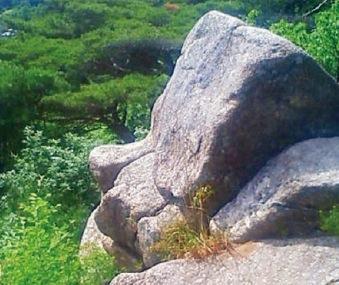 天狗の顔に見える巨石「天狗岩」