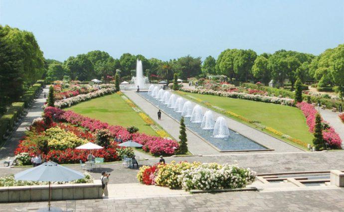 都市部に近いながら、自然あふれる都市公園として親しまれる神戸市立須磨離宮公園