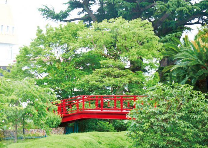 瑞々しい緑に包まれた庭園を眺めながら