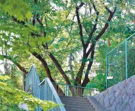 東山公園は芦屋市の山手住宅地の中にある