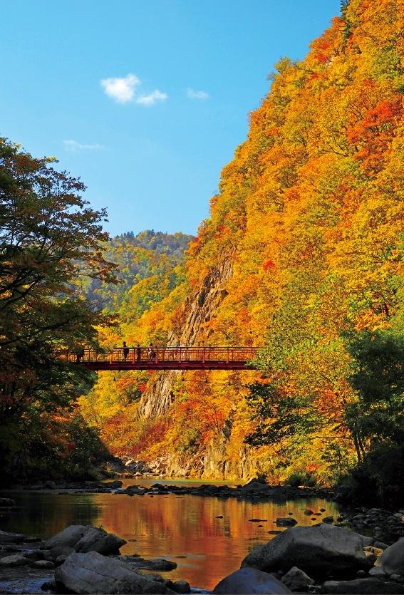 二見吊橋・かっぱ淵 豊平川をまたぐ散策路は癒しのスポット。夜は『Jozankei Nature Luminarie』の会場にもなる