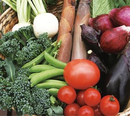 食の安全・安心を伝える神戸の農産物