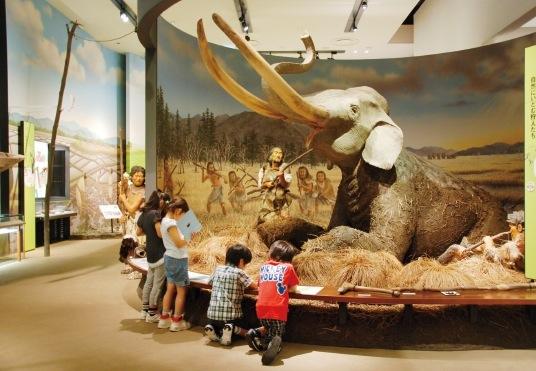 ナウマンゾウに挑む古代人の原寸大模型。テーマ展示室では、4つのテーマで兵庫の歴史を解明していく