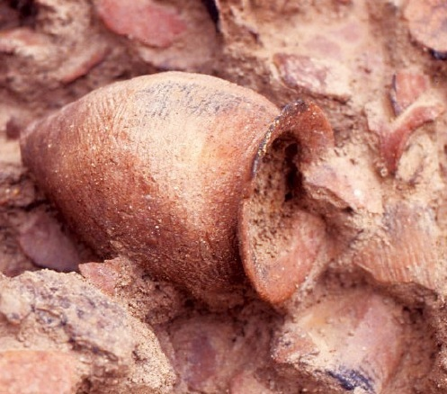 遺構からは、破棄された土器群が発見されている