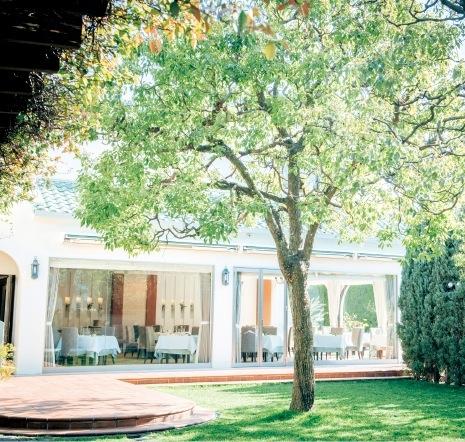 優しい自然光に包まれる邸宅風のレストラン