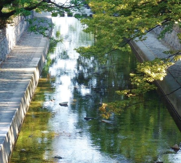 桜や松の美しい並木が川筋に沿って続く夙川