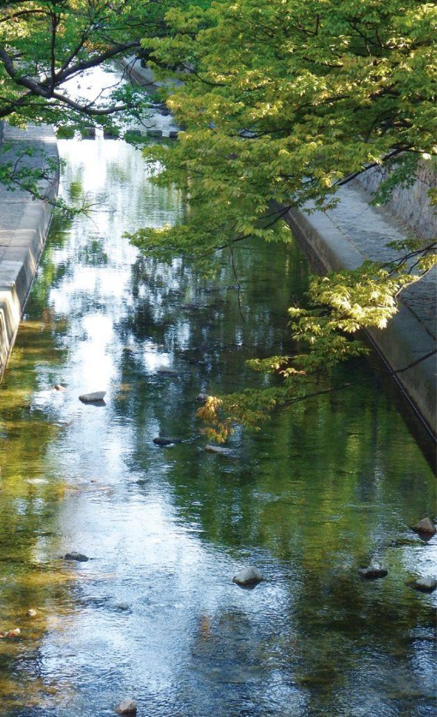 自然の地形や緑あふれる良好な環境が高く評価されている夙川