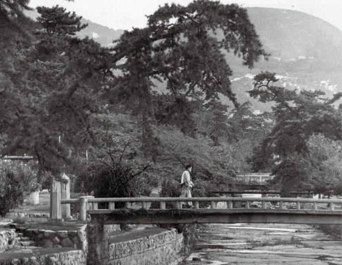 村上春樹氏の小説にも登場する昭和30年代の葭原橋(あしはらばし)。西宮市情報公開課所蔵
