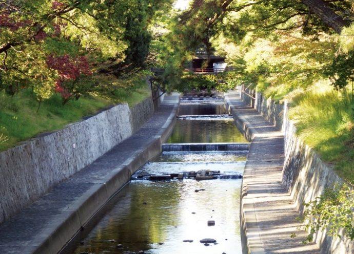 「近代文学で、夙川ほど文学に登場する川は全国でも珍しい」と河内さん