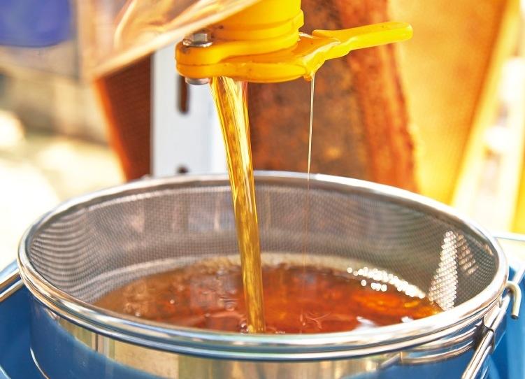 砂糖水のような花蜜は、ミツバチの酵素によりハチミツとなる