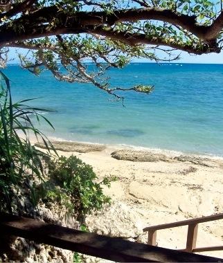 青い海と白い砂浜はまるでプライベートビーチのよう