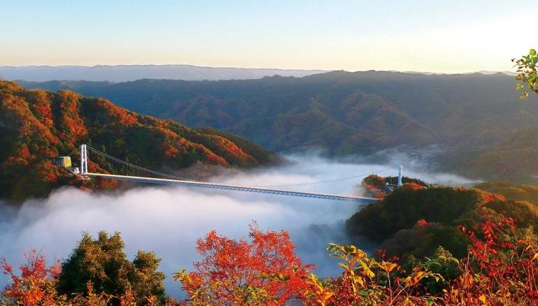 茨城県・常陸太田市の「竜神峡」は早朝には朝焼けの雲海が広がる絶景に出会えることも。 「竜神大吊橋」は高さ日本一のバンジージャンプのスポットとしても有名(紅葉見頃は11月中旬~下旬)