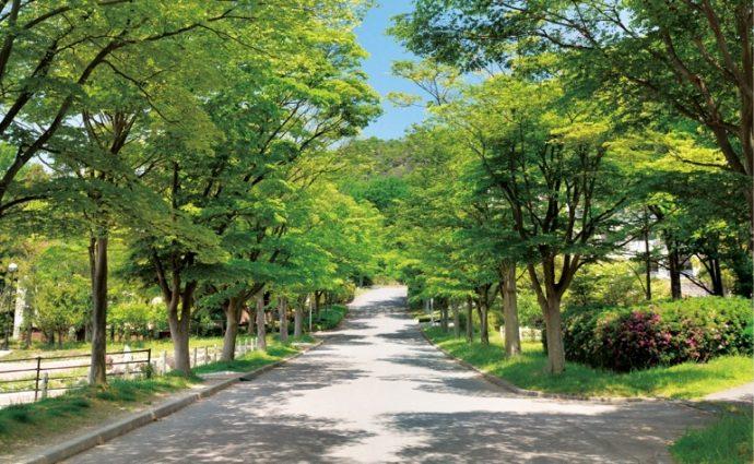 豊かな緑に囲まれた、広い敷地を誇る