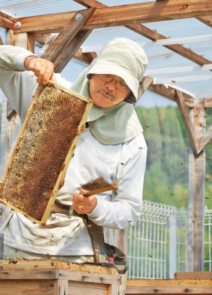 養蜂を始めた際、俵養蜂場の弟子だった春井さんと出会い、養蜂について多くを学んだ